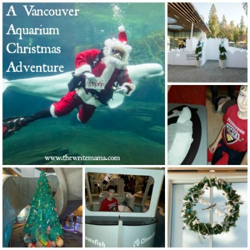 Vancouver Aquarium Christmas Visit